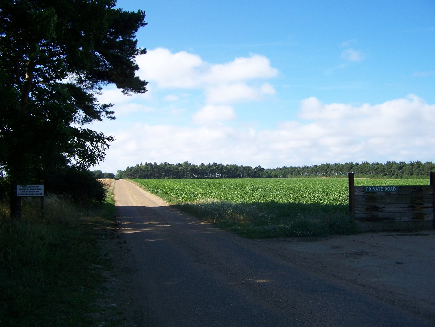 The entrance to this isolated airfield 15:07:2006.JPG